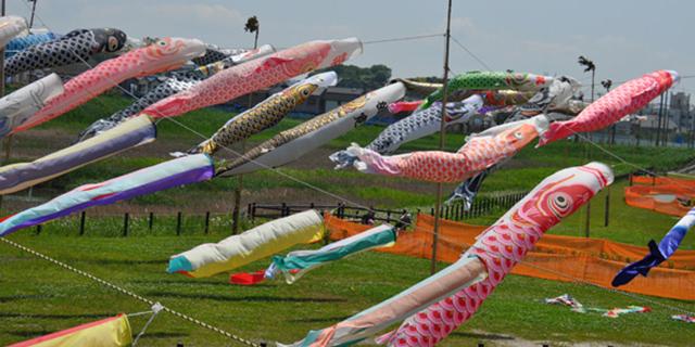 国分川鯉のぼりフェスティバル