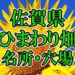 佐賀県(九州)のひまわり畑 オススメ人気スポット/名所/穴場・2018年イベント情報