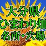 大分県(九州)のひまわり畑 オススメ人気スポット/名所/穴場・2018年イベント情報