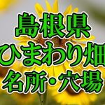 島根県(中国)のひまわり畑 オススメ人気スポット/名所/穴場・2018年イベント情報