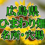 広島県(中国)のひまわり畑 オススメ人気スポット/名所/穴場・2018年イベント情報