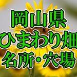 岡山県(中国)のひまわり畑 オススメ人気スポット/名所/穴場・2018年イベント情報