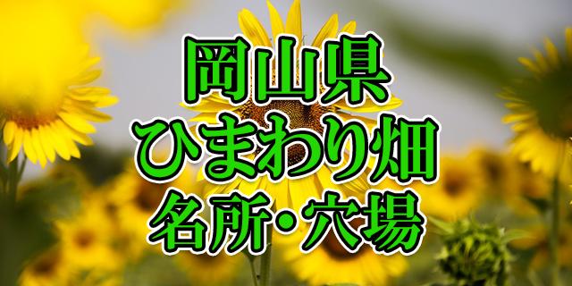 ひまわり畑 岡山県