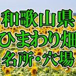 和歌山県(関西)のひまわり畑 オススメ人気スポット/名所/穴場・2018年イベント情報