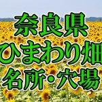 奈良県(関西)のひまわり畑 オススメ人気スポット/名所/穴場・2018年イベント情報