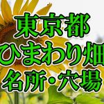 東京都(関東)のひまわり畑 オススメ人気スポット/名所/穴場・2018年イベント情報