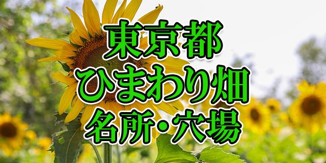 ひまわり畑 東京都