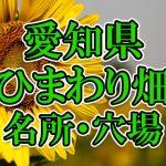 愛知県(東海)のひまわり畑 オススメ人気スポット/名所/穴場・2018年イベント情報