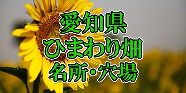 ひまわり畑 愛知県