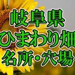 岐阜県(東海)のひまわり畑 オススメ人気スポット/名所/穴場・2018年イベント情報