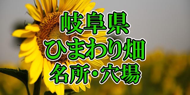 ひまわり畑 岐阜県