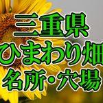 三重県(東海)のひまわり畑 オススメ人気スポット/名所/穴場・2018年イベント情報