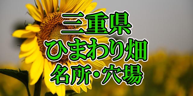 ひまわり畑 三重県