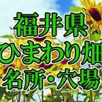 福井県(北陸)のひまわり畑 オススメ人気スポット/名所/穴場・2018年イベント情報