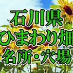 石川県(北陸)のひまわり畑 オススメ人気スポット/名所/穴場・2018年イベント情報