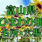 富山県(北陸)のひまわり畑 オススメ人気スポット/名所/穴場・2018年イベント情報