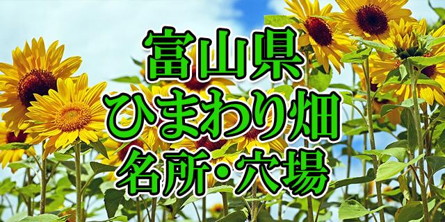 ひまわり畑 富山県