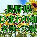 長野県のひまわり畑 オススメ人気スポット/名所/穴場・2018年イベント情報
