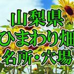 山梨県のひまわり畑 オススメ人気スポット/名所/穴場・2018年イベント情報