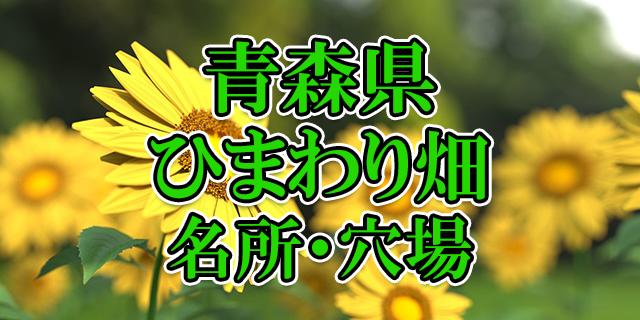 ひまわり畑 青森県