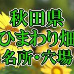 秋田県(東北)のひまわり畑 オススメ人気スポット/名所/穴場・2018年イベント情報
