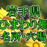 岩手県(東北)のひまわり畑 オススメ人気スポット/名所/穴場・2018年イベント情報