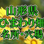 山形県(東北)のひまわり畑 オススメ人気スポット/名所/穴場・2018年イベント情報