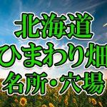 北海道のひまわり畑 オススメ人気スポット/名所/穴場・2018年イベント情報