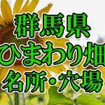 群馬県(関東)のひまわり畑 オススメ人気スポット/名所/穴場・2018年イベント情報