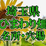 埼玉県(関東)のひまわり畑 オススメ人気スポット/名所/穴場・2018年イベント情報