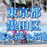 東京都内 墨田区 じゃぶじゃぶ池おすすめ人気スポット・公園2019 子供の水遊び 噴水