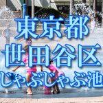 東京都内 世田谷区 じゃぶじゃぶ池おすすめ人気スポット・公園2019 子供の水遊び