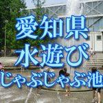 愛知県・名古屋の子供が水遊びできるじゃぶじゃぶ池・公園・噴水おすすめ人気スポット2018