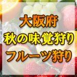 大阪府 秋の味覚狩り・果物狩りスポット2018年