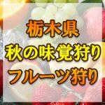 栃木県(関東)秋の味覚狩り・果物狩りスポット2018年