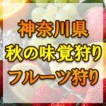 神奈川県(関東)秋の味覚狩り・果物狩りスポット2018年