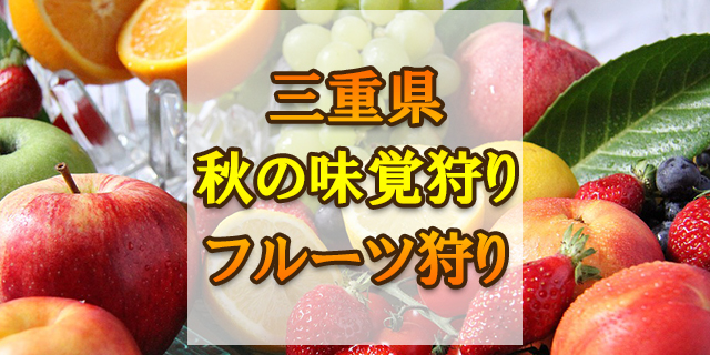 秋の味覚狩り 三重県