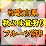 和歌山県(関西) 秋の味覚狩り・果物狩りスポット2018年 みかん狩りやぶどう狩りなど