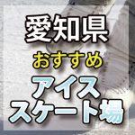 愛知県 アイススケート場・スケートリンク 屋内屋外/教室/通年