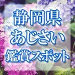 静岡県のあじさい鑑賞スポット・名所・穴場 2019年の見ごろ・開花・紫陽花祭り情報