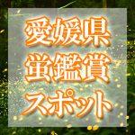 愛媛県(四国)のホタル観賞スポット・名所/穴場 2019 見ごろの時期は?