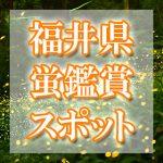 福井県のホタル観賞スポット・名所/穴場 2019 見ごろの時期は?