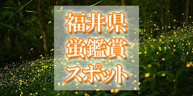 福井県 ホタル観賞スポット
