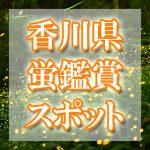 香川県(四国)のホタル観賞スポット・名所/穴場 2019 見ごろの時期は?