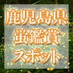 鹿児島県(九州)のホタル観賞スポット・名所/穴場 2020 見ごろの時期は?