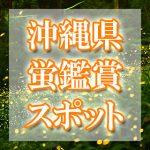 沖縄県のホタル観賞スポット・名所/穴場 2019 見ごろの時期は?