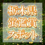 栃木県のホタル観賞スポット・名所/穴場 2019 見ごろの時期は?