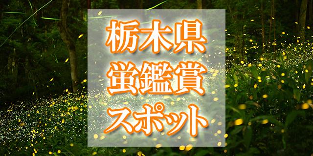 栃木県ホタル観賞スポット
