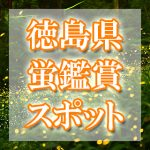 徳島県(四国)のホタル観賞スポット・名所/穴場 2019 見ごろの時期は?