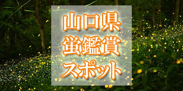 山口県ホタル観賞スポット